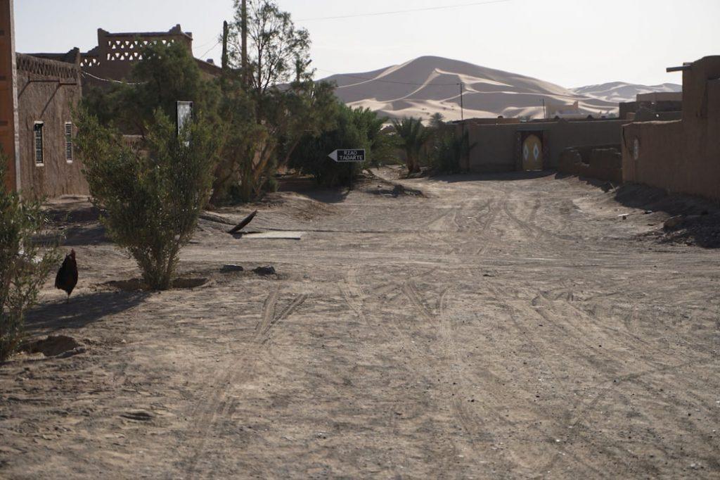 Widok z miasta Hassilabied na wydmy Sahary