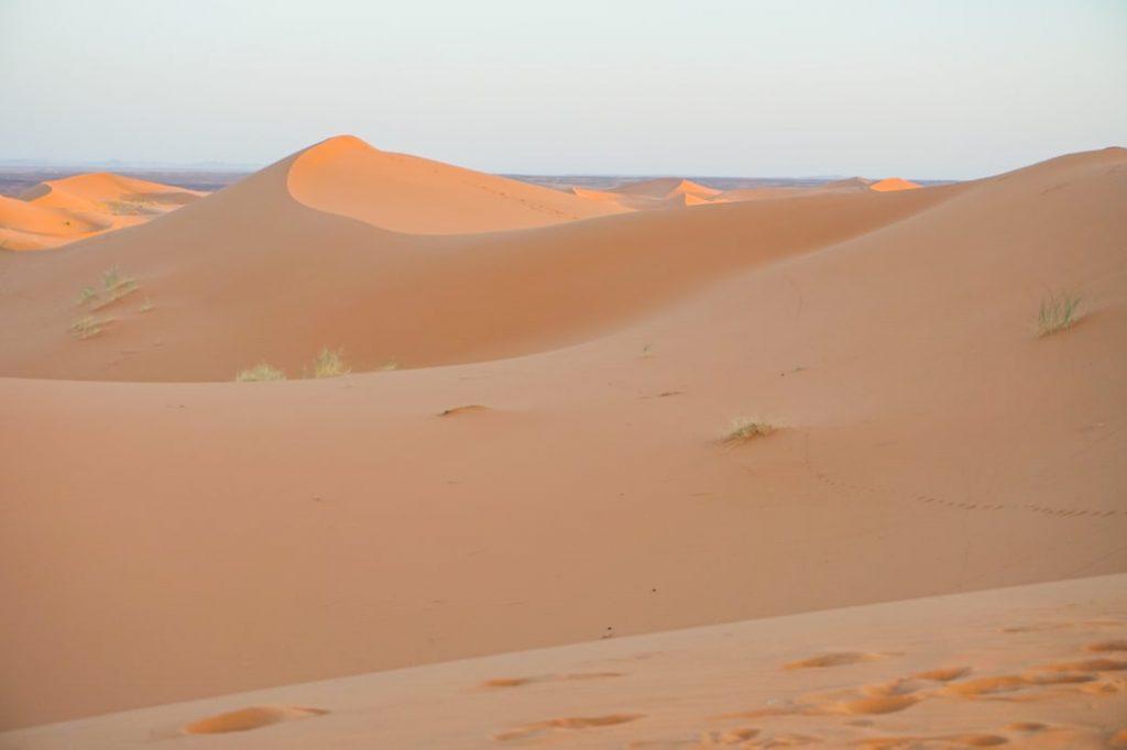 Sahara Maroko Marocco