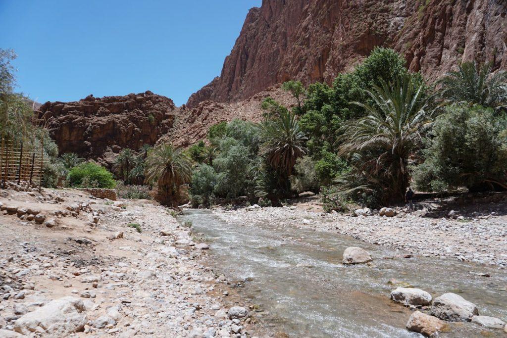 Rzeka w wąwozie Todra