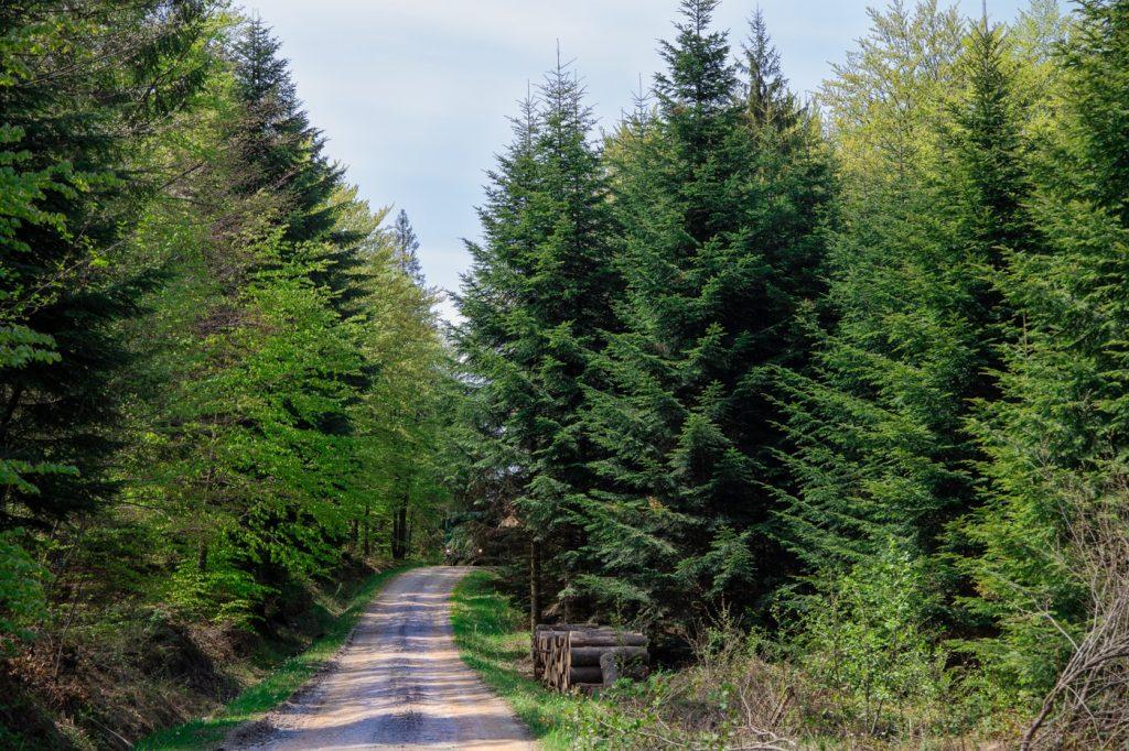 Szlaki w Beskidzie Niskim