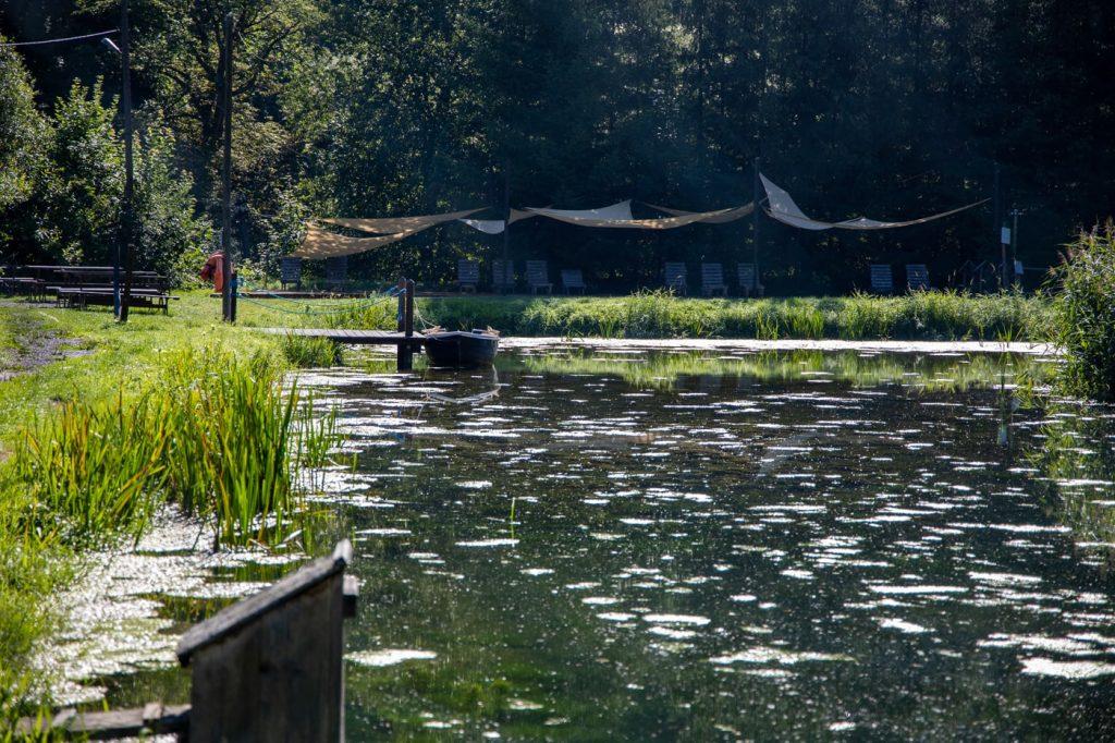 pstrągi w Ojcowskim Parku Narodowym