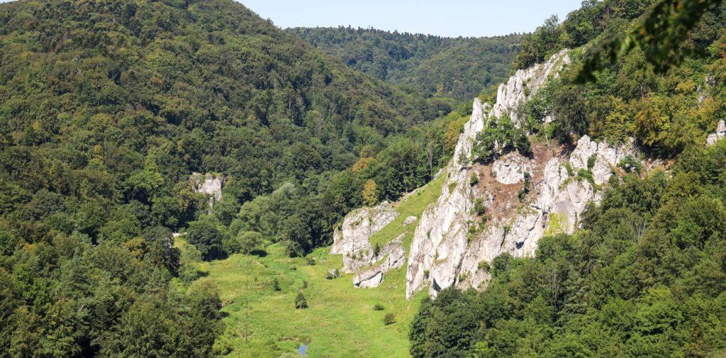Widok z punktu widokowego w Ojcowskim Parku Narodowym